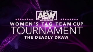 Night 1 – Watch AEW Womens Tag Team Cup Tournament 2020 8/3/20