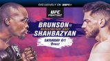 Watch UFC Fight Night 173: Brunson Vs Shahbazyan 8/1/20